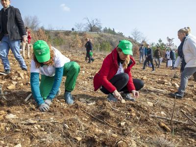 Община Стара Загора се включи в засаждането на Музикална гора