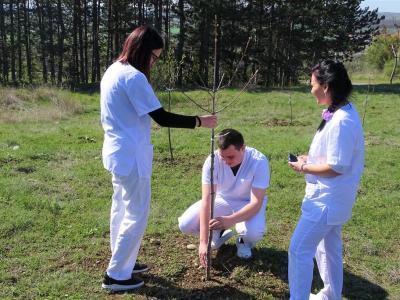 300 млади дръвчета засадиха студенти и служители на Тракийския университет край студентските общежития