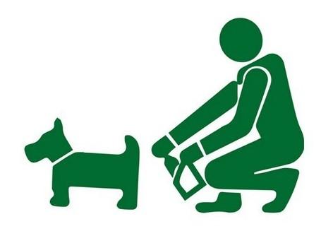 В Тел Авив откриха начин да идентифицират собствениците на кучета, които не чистят след тях