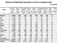 Информация за пазара на труда в област Стара Загора януари-юни 2021 г.