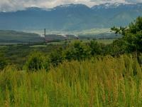 Близо половината българи знаят за климатичните промени, показа проучване на WWF