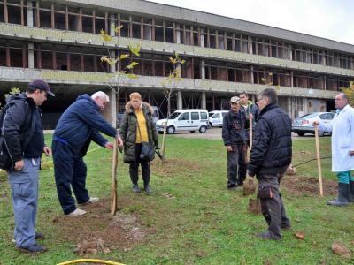 250 дръвчета засадиха в Тракийския университет