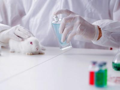 Европейски екозащитници и брандове скочиха срещу тестването на козметика върху животни